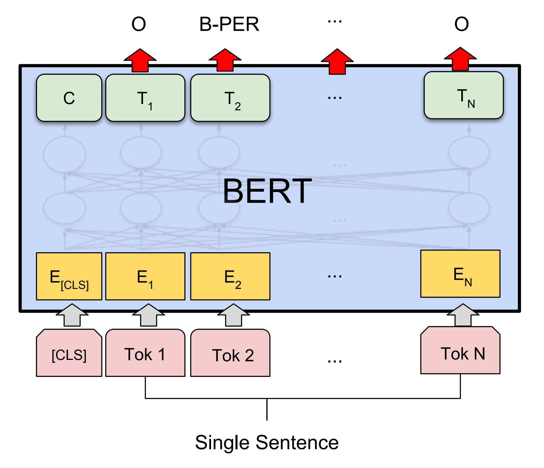 Illustration of BERT for NER (Devlin et al. 2018)